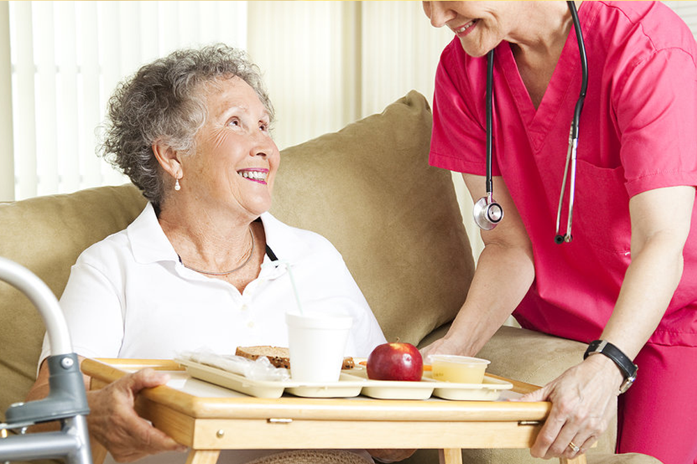 Ideal Professional Institute Home Health Aide Hha